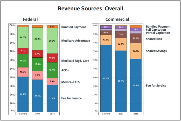 AMGA Revenue Sources Chart